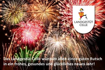 Guten Rutsch in das Jahr 2014! | Niedersächsisches Landgestüt